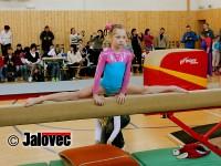 V Meziříčí závodilo 71 nadějných gymnastek