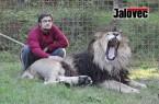 VIDEO: Obyvatele Zděchova děsí lev