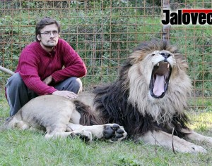 Zděchovský lev jitří vášně. Policie i úřady jsou bezradní