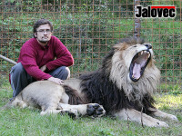 Aktuálně! Záznamy z kamer a pitva hovoří jasně: Michala Práška usmrtil lev