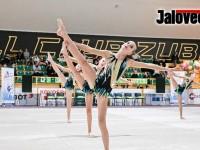 Házenkářskou halu obsadily půvabné gymnastky